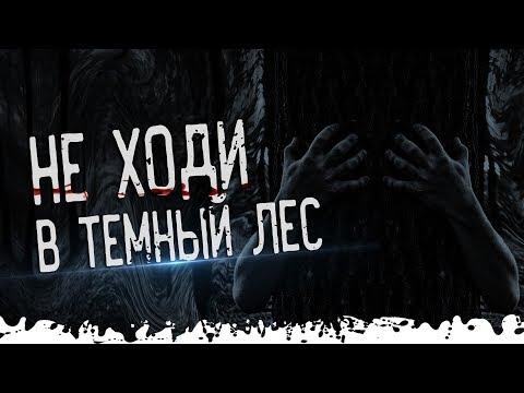 Истории на ночь: Темный лес