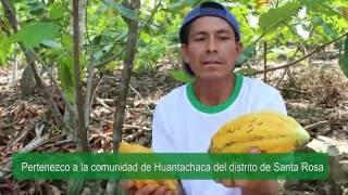 Saludo por el Día del Cacao y el Chocolate Peruano - VRAEM