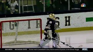 Michigan State at Notre Dame - Hockey Highlights