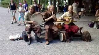 Birka Viking