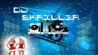 Electro House Mix - DJ SKRILL3R Christmas special edition