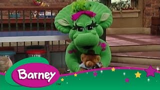 Barney | On Again, Off Again + Here Kitty, Kitty | Videos for Kids