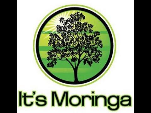 Moringa an Angel in Plant Form Documentary