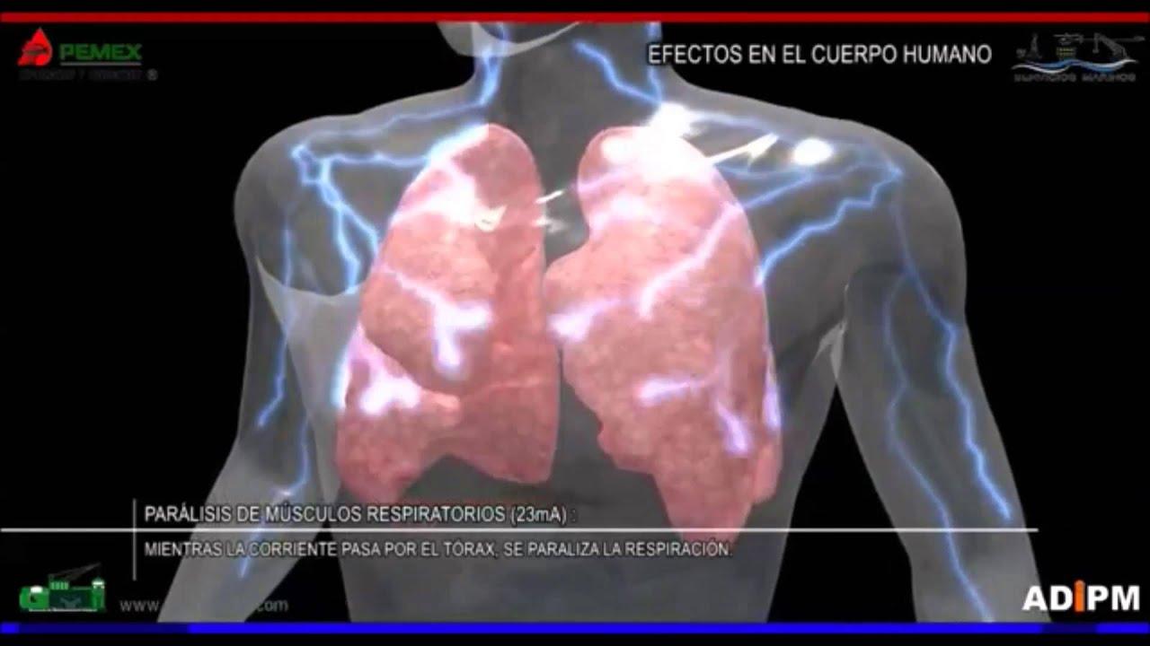Electricidad efectos en el cuerpo humano - YouTube