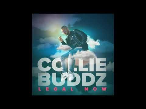 Collie Buddz €� Legal Now