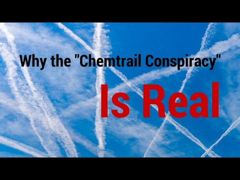 lets see what some experts say about chemtrails being real or not