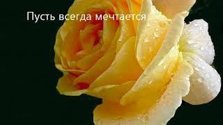 Прекрасные розы хорошему человеку с добрыми пожеланиями