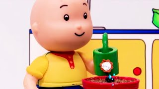 Caillou and the Flower - Caillou   WildBrain