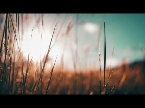Da Capo feat. Oluhle - Gazi Lemvana (Dub Mix)
