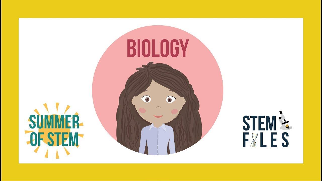 biology - summer of stem 2017 - celery osmosis