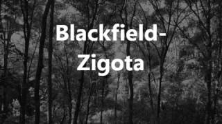 Blackfield - Zigota (lyrics)