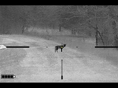 Flying Suppressor Coyote Hunt