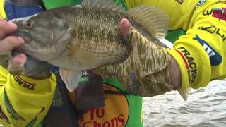 Cranking Giant Spotted Bass on the Coosa River System