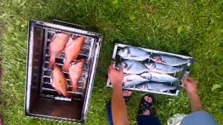 Как коптить рыбу (samogonnik.ru)(Как коптить рыбу, коптильни для копчения рыб., 2013-08-15T22:11:27.000Z)
