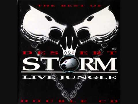 The Best of Desert Storm - 1994 to 1995