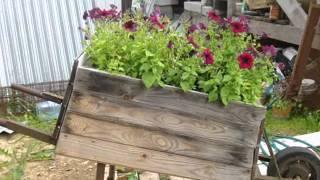 Необычные ящики для цветов - изюминка вашего сада(Еще ваш сад можно украсить вот такими необычными, и разными ящиками для цветов и расставить их по всему..., 2014-09-06T08:29:35.000Z)