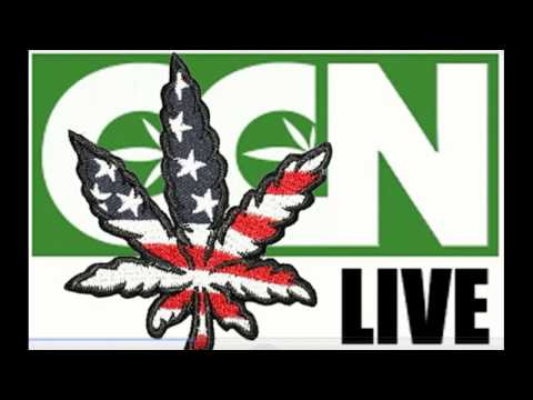 Cannabis Culture News LIVE: What Marijuana Legalization Wins Mean For The USA