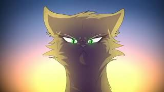 Коты воители клип:Lost on you