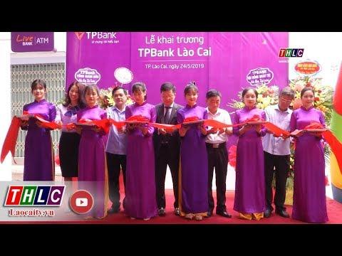 Thời sự Lào Cai 22h00 (24/5/2019) | THLC