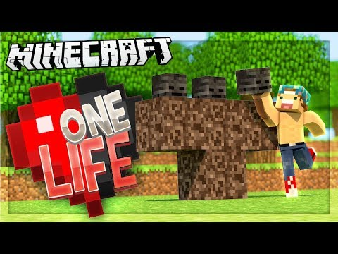 I'M GONNA FIGHT THE WITHER! | One Life SMP #58