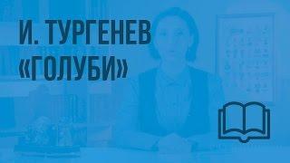 И.Тургенев «Голуби». Видеоурок по чтению 3 класс