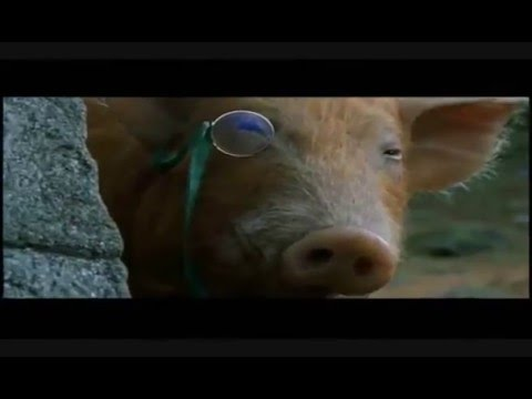 Animal Farm , a video essay.