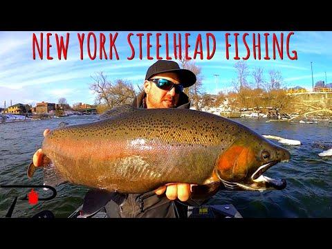 Steelhead Fishing New York