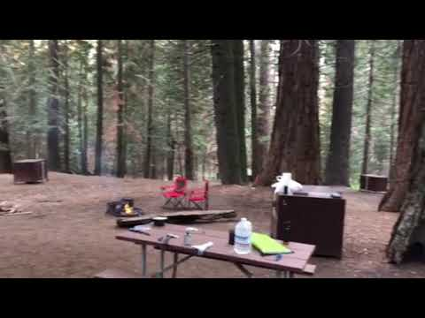 Video of Atwell Mill - Sequoia National Park, CA from Emily U