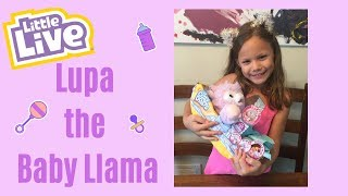Little Live Cozy Dozys Lupa the Lllama by Moose Toys