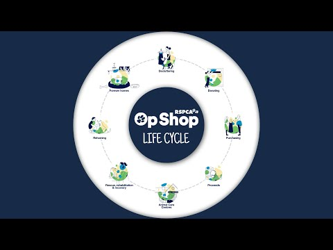 The Life Cycle Of An RSPCA Op Shop