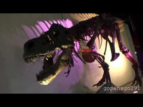 halifax discovery center with the world's largest t rex ever found