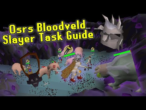 OSRS Bloodveld Slayer Guide Using the Catacombs of Kourend - Slayer Made Easy