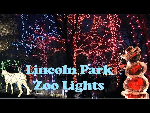 Lincoln Park Zoo Lights in 4K December 2017 Chicago ZooLIGHTS 2018