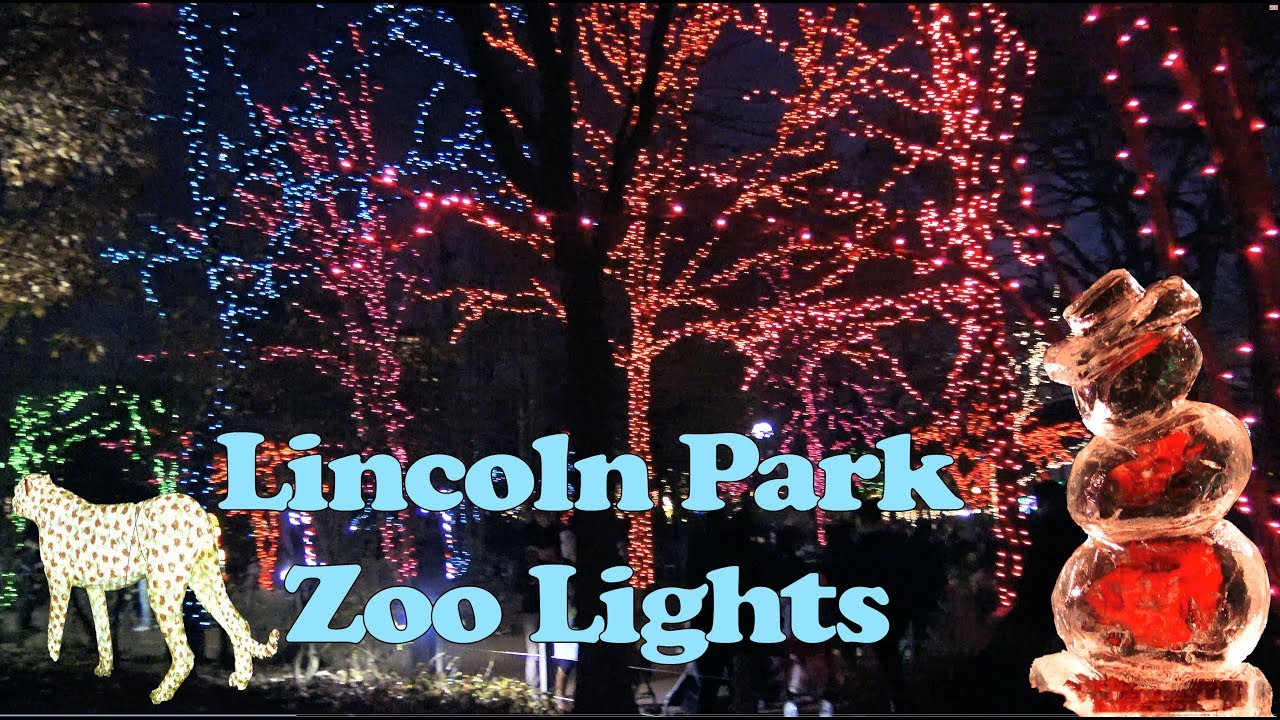 Christmas In Chicago 2018.Lincoln Park Zoo Lights In 4k December 2017 Chicago Zoolights 2018