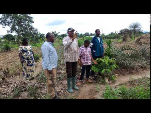 S.M. Mouatong - Développer l'Afrique en industrialisant ses villages