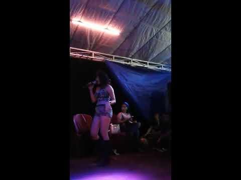 Sofie ehoy sow in seredang bareng pujangga thumbnail