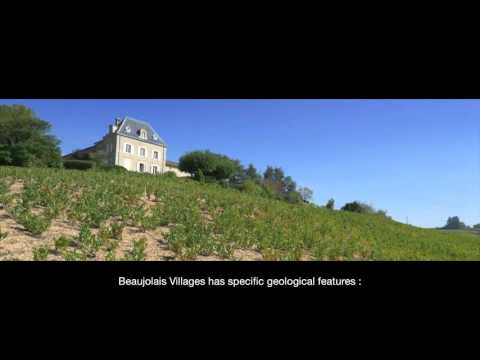 Georges Duboeuf Beaujolais Villages (video 2016)
