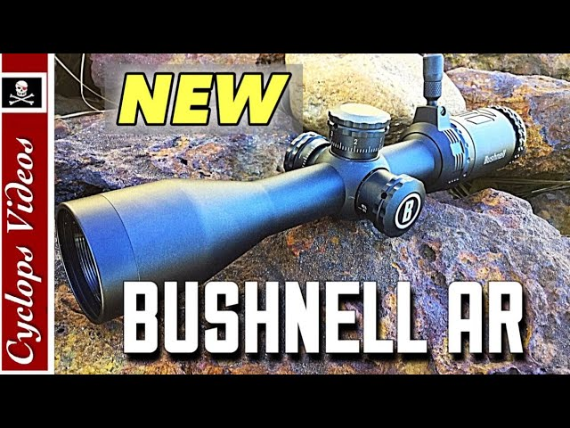 Bushnell AR 223 Scope Review . Best budget AR-15 Scope