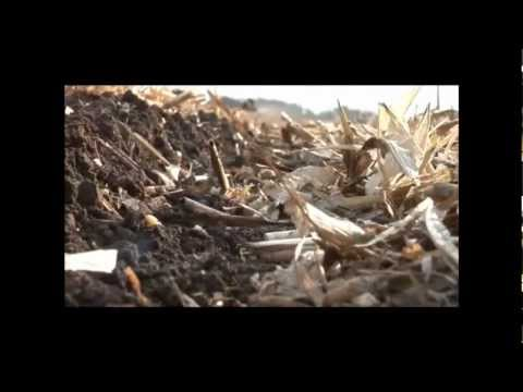 The Importance of Organic matter