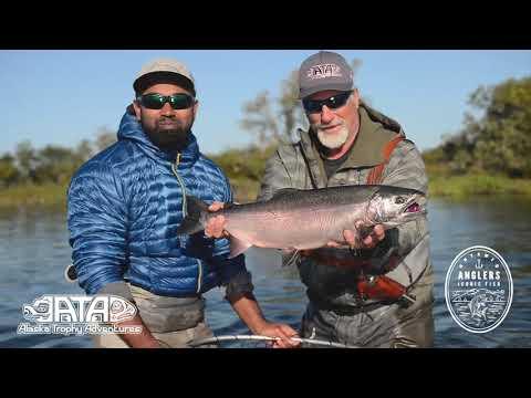 The Untamed Anglers Alaskan Adventure With ATA Lodge, Salmon Fishing Highlights -Bristol Bay, Alaska
