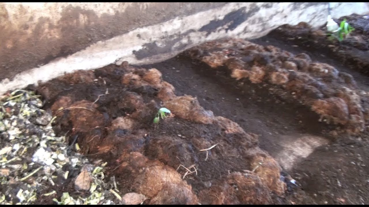 Worm farming / How to - Two methods on Worm Composting