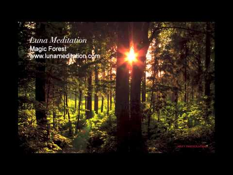 ♡ Magic Forest - over one hour WONDERFUL Meditation Music, Relaxation Music! (Entspannungsmusik) *1*