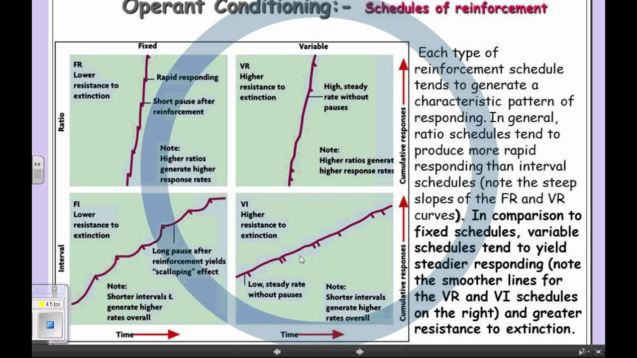 6aLEARNING less6- schedules of reinforcement - YouTube
