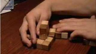 Solving Snake Puzzle
