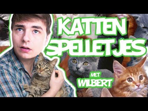CAT MARIO RAGE - ( Katten spelletjes met Wilbert)