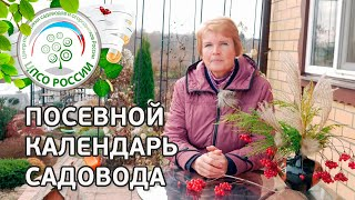 /dir/sadovodstvo/posevnoj_kalendar_sadovoda_kak_sostavit_kalendar_ogorodnika/20-1-0-542