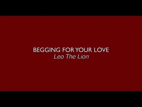 Begging For Your Love - Leo The Lion (Text Video)