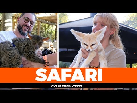 SAFARI WEST, um safari perto de San Francisco, California