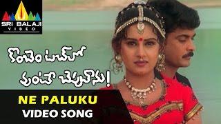 Konchem Touchlo Vunte Cheputanu Songs | Ne Paluku Video Song | Sivaji, Veda | Sri Balaji Video