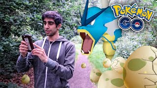 WILD GYARADOS & HATCHING EGGS! - POKEMON GO